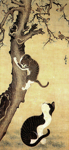 Cats and Sparrows