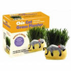 Snoozy Kitty Cat Grass Planter