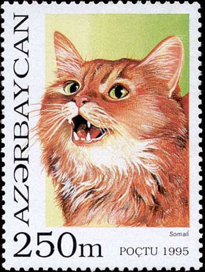 Azerbaijan Cat Stamp