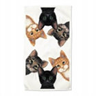Peeping Toms Kitten Dish Towels