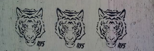 Tiger Graffiti